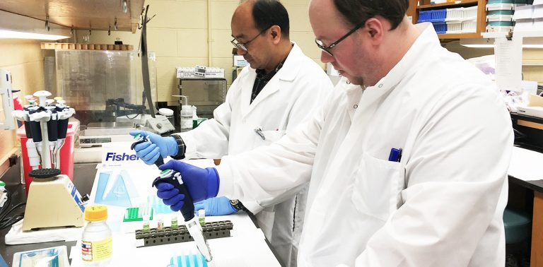 Assay Services staff Hemanta Shrestha (l) and Cody James Corbett (r) perform ELISA assays.