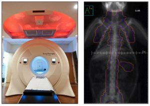 Tomotherapy scanner at left and full-body scan of a rhesus at right.