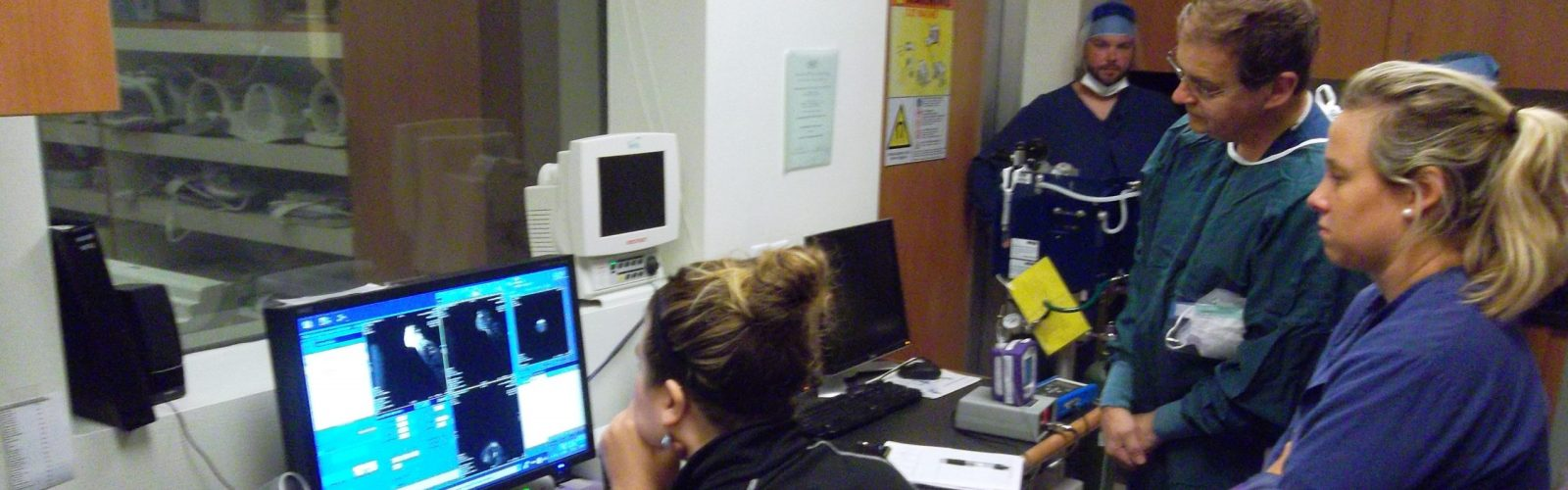 Energy and Metabolic Disease Group members view a marmoset MRI at the Wisconsin Institutes for Medical Research, as part of a study exploring links between energy metabolism and neural function. (R. Shapiro image)