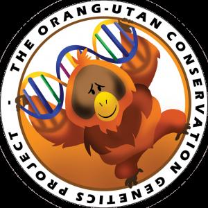 Pioneering Orang Utan Genetics Project Comes To The Wnprc Wnprc Uw Madison