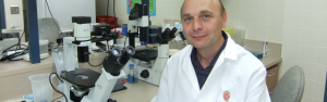 Igor Slukvin, who studies hematopoietic stem cells, in his lab at the WNRPC (University Communications image).