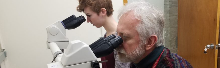Ted Golos trains an undergraduate student as they study rhesus placental tissue under a microscope (J. Lenon photo).